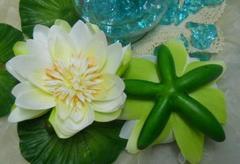Fiore di Loto Galleggiante