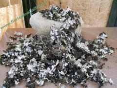 Muschio di Roccia gr. 250 ( Stones Moss ) Naturale preservato  - Sconti per Fioristi e Aziende