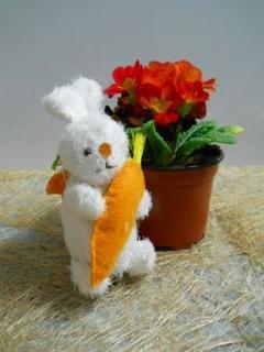 Conigli con carota  in 2 misure