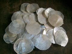 Cerchi Madreperla Shell capiz Confezione gr. 100