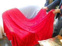 Drappo in Velluto Rosso H 150 x 300