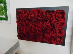 Quadro Roseto   cm. 50 x 35  con 24 rose