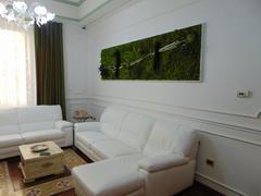 Quadro Vegetale Preservato Manhattan cm. 300 x 80 per fioristi, Architetti e Arredatori