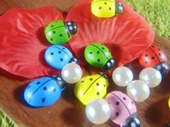 Coccinelle con biadesivo in diverse misure  in 4 colori