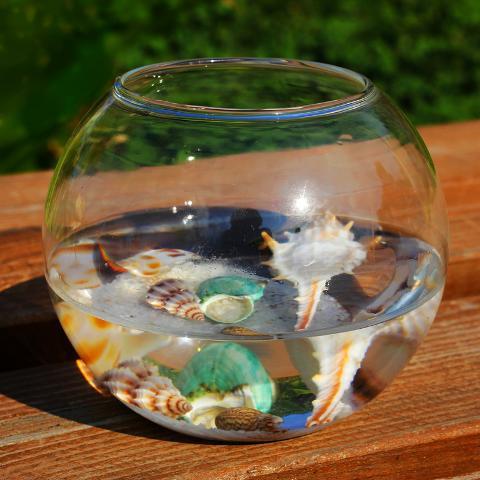 Sfera in vetro Ø 10 trasparente  con foro