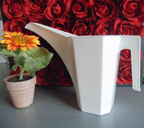 Annaffiatoio Plastica da Lt. 2 Becco lungo per fioristi e wedding