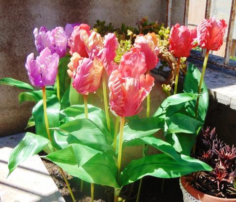 Tulipano Pappagallo Artificiale in poliestere - Sconti per Fioristi e Aziende