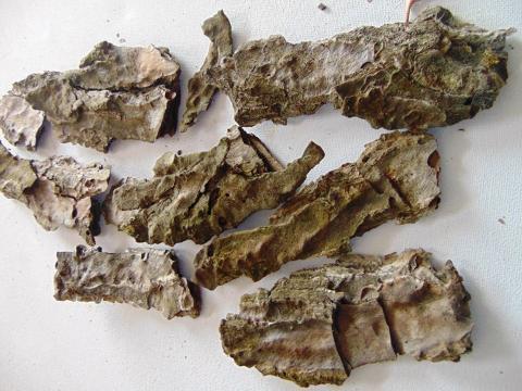 Corteccia Naturale di Pino busta  gr. 500