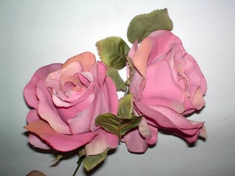 Rosa selvatica -  Wild rose in 2 modelli