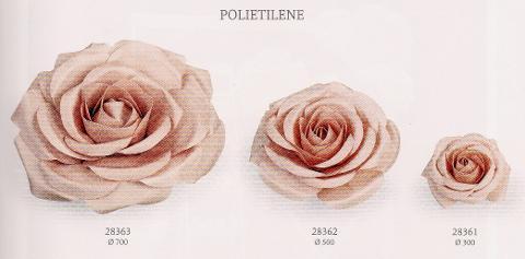 Rosa Gigante dm.30 - 50- 70 Rosa cipria in polietilene