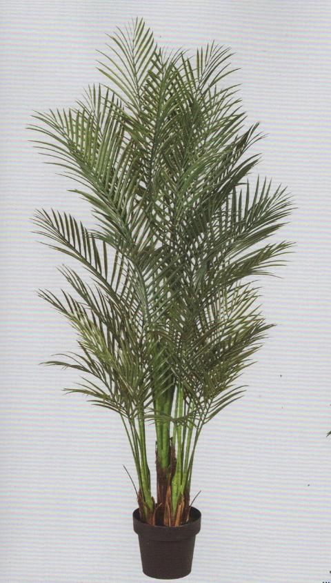 Areca Palm H 160 artificiale con 1076 foglie per Fioristi, Wedding, Arredatori