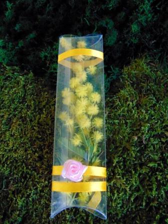Mimosa fresca  in tubo PVC cm. 15