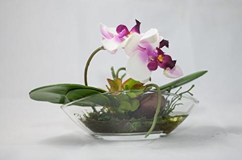 Ciotola in vetro ovale lunga cm.30 x10,5 H 10