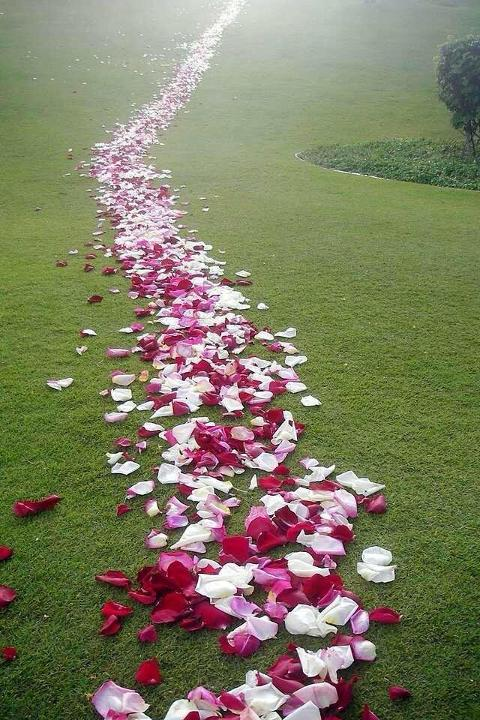 Petali di rosa x 100 artificiali in poliestere - Sconti per Fioristi e Aziende