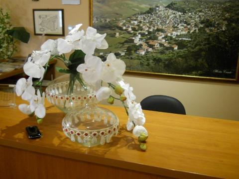 Vaso in Vetro dm. 28 H 19 Modello Grecia per fioristi e wedding
