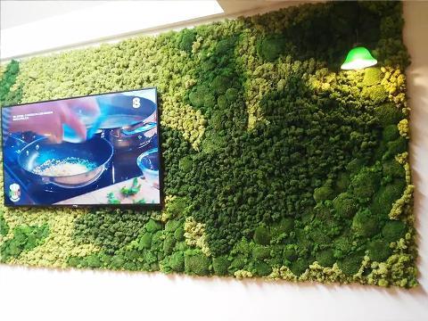 Parete Moss Stabilizzata Wall Moss a metro quadrato - Sconti per Fioristi e Aziende