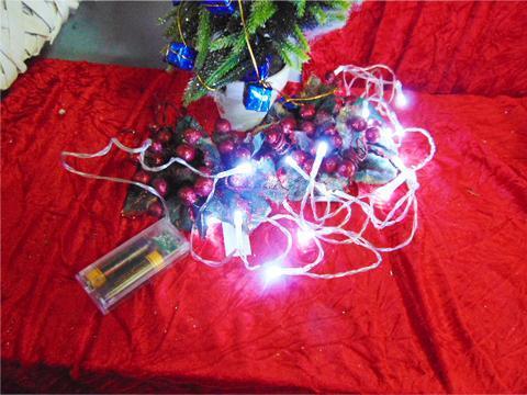 Micro Led x 20 a batteria mt. 2,5 luce calda e fredda - Sconti per Fioristi e Aziende