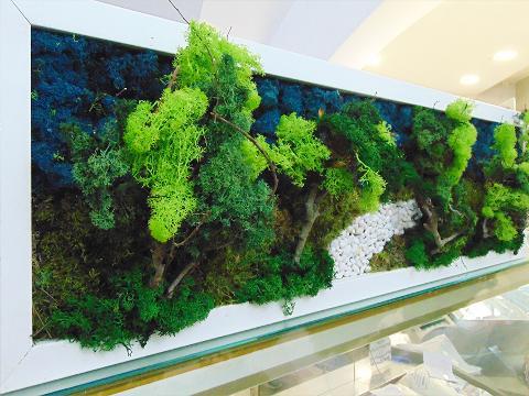 Quadro Vegetale Preservato cm. 36 x 59 - Sconti per Fioristi e Aziende