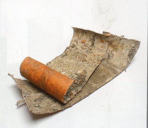 Corteccia di Betulla naturale  a pannelli Calibrati - Sconti per Fioristi e Aziende