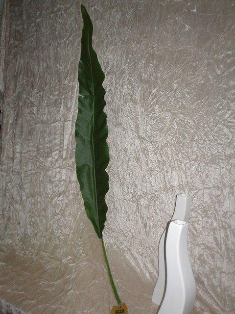 Foglia di Banano  H 130