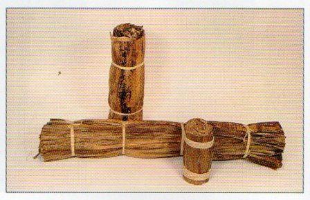 Corteccia di Banano  H 40 - Sconti per Fioristi e Aziende