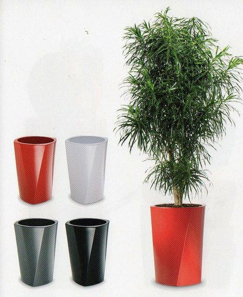Vaso Ellisse H 75 dm. 55