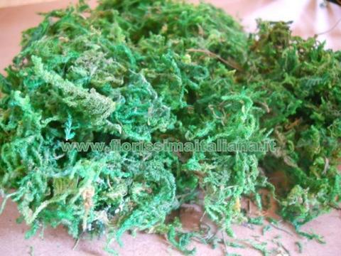 Dry Moss x 10 gr. 940