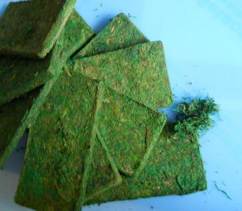 Muschio Dry Moss gr. 940 Conf. 10 mattonelle - Sconti per Fioristi e Aziende