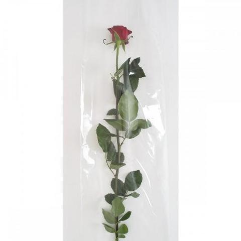 Buste per rosa H 20 X 100 cm in cellofan  in 2 modelli