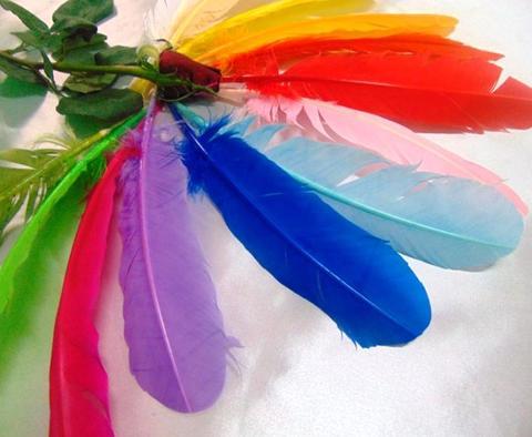 Piume colorate H 29 cofezione monocolore da 6 piume