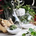 Goccia in vetro con foro da appendere H 19 dm. 10 - Sconti per Fioristi e Aziende