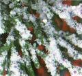 Neve glitterata 170 ml. - Sconti per Fioristi e Aziende