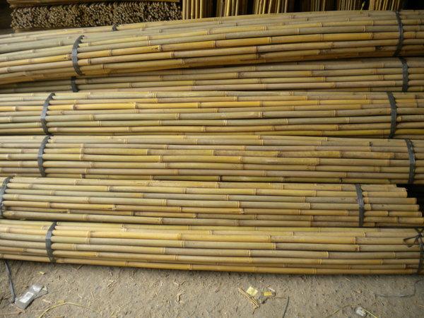 Vendita Bambu Milano.Importatore Diretto Di Canne Di Bambu Per Vigneti E Per Uso
