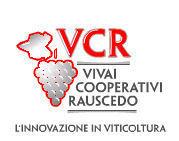 Rivendita barbatelle innestate e selvatiche Vivai cooperativi Rauscedo