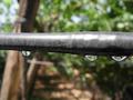 Irrigazione a Goccia DUAL®