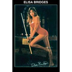 POSTER ELISA BRIDGES 15184