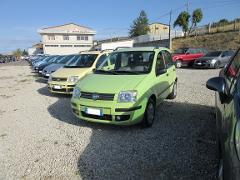 Fiat Panda 1.2 Dynamic  Benzina