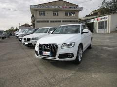 Audi Q5 2.0 TDI 177cv Advanced Plus Quattro      *VENDUTO* Diesel